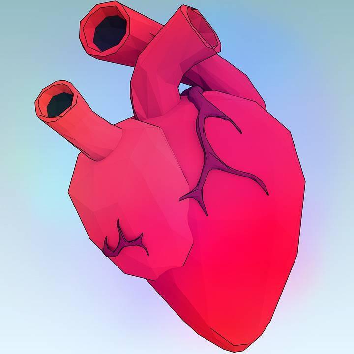 吃面被狗吓心脏病心脏病人应如何护理