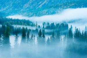 邂逅山城夏宫—在仙女山任之·拾光小镇寻觅大自然的一抹凉意